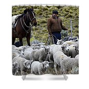 Herding Sheep Patagonia 3 Shower Curtain