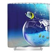 Here Fishy Fishy Shower Curtain