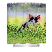 Here Kitty Kitty Kitty Shower Curtain