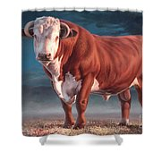 Hereford Bull Shower Curtain