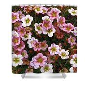 Here's Flowers For You Shower Curtain