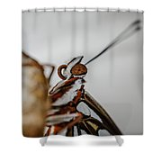 Here's Looking At You Squared Shower Curtain