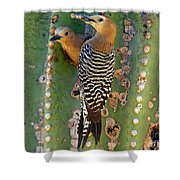 Here's Lunch Shower Curtain