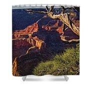 Hermit Rest Grand Canyon National Park Shower Curtain