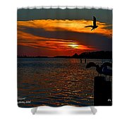 Heron And Seagull Sunset I Mlo Shower Curtain