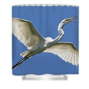 Heron Flight Shower Curtain