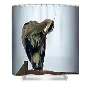 Heron Grooming Shower Curtain