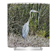Heron Height Shower Curtain