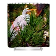 Heron In The Pines Shower Curtain