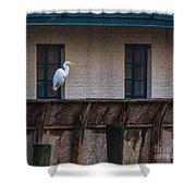 Heron In The Window Shower Curtain