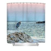 Heron On Beach Shower Curtain