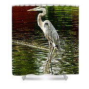 Heron On The Stick Shower Curtain