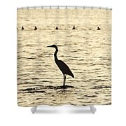 Heron Standing In Water Shower Curtain