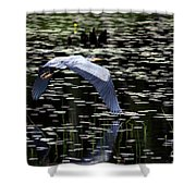 Heron Take Off Shower Curtain