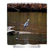 Heron Talking Shower Curtain