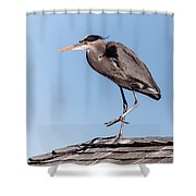 Heron Up On The Roof Shower Curtain