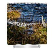 Heron Watchful Eye Shower Curtain