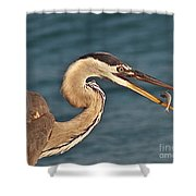 Heron With Catch Shower Curtain
