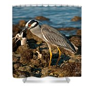 Heron With Crab Shower Curtain