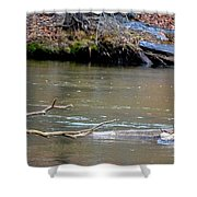 Heron With Ducks Shower Curtain
