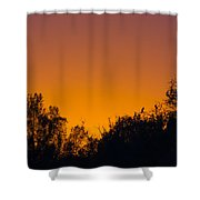 Herons Dans Le Soleil Couchant Shower Curtain