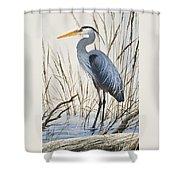 Herons Natural World Shower Curtain