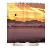 Heron's Sunrise Shower Curtain