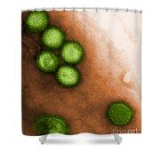Herpes Simplex Virus Tem Shower Curtain