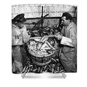Herring Fishing Howth 1955  Shower Curtain