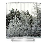 Hersey Lake Under Snow Shower Curtain