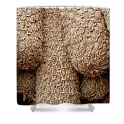Hessian Boat Bumpers Shower Curtain