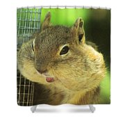 Hey Check Out My Big Cheeks Shower Curtain