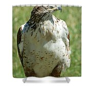 Hey George Over Here Shower Curtain