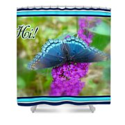 Hi Hello Greeting Card - Red Spotted Purple Butterfly Shower Curtain