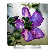 Hibiscus 02 Shower Curtain
