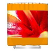 Hibiscus Abstract In Red And Yellow Shower Curtain
