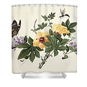 Hibiscus And Butterfly Shower Curtain
