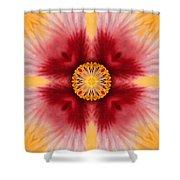 Hibiscus Close-up--kaleidoscope Shower Curtain