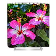 Hibiscus Flowers Shower Curtain