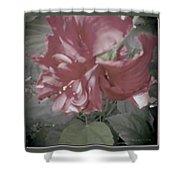 Hibiscus Dream Shower Curtain