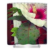 Hibiscus Flower In Bloom Shower Curtain