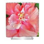 Hibiscus II Shower Curtain