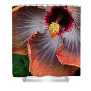 Hibiscus Key Largo Shower Curtain