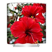 Hibiscus Perspective Shower Curtain