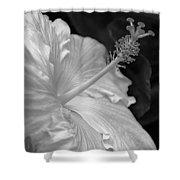 Hibiscus Profile Shower Curtain