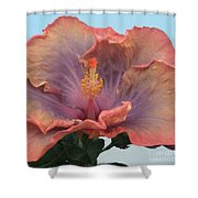 Hibiscus Shower Curtain