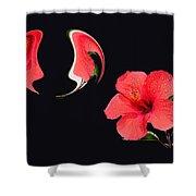 Hibiscus Seed Dream Digital Art Shower Curtain