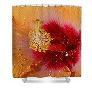 Hibiscus Stamen IIi Shower Curtain
