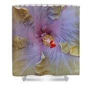 Hibiscus Storm Shower Curtain