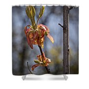 Hickory Bloom Shower Curtain